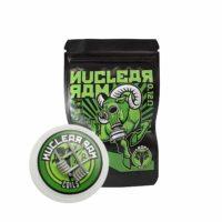 Chernobyl Nuclear Ram